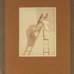 Maler i stige. Foto: Ralph L. Wilson