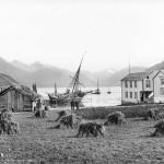 Isfjorden seet fra Næs, Romsdalen.1888 Foto: Knud Knudsen